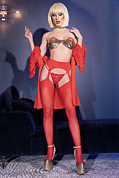 Garter Stockings CR4312 rot